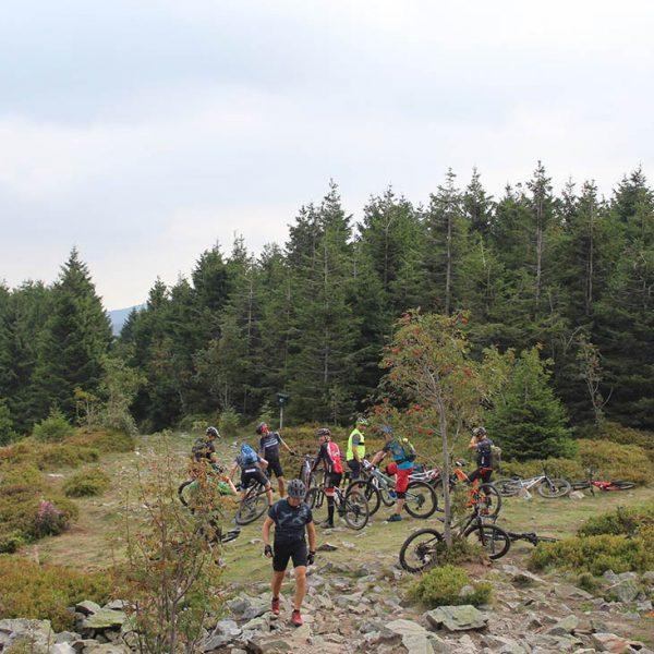 Rundtur i Harzen-05